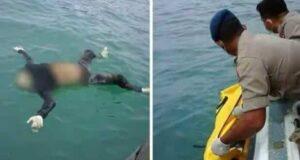 Arul Arifin Ditemukan Terapung di Perairan Suralaya Cilegon