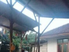 Banten Masuki Musim Panen Padi dan Jagung
