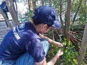 Mahasiswa KKN PPM UGM Mengembangkan Gel Hand Sanitizer Berbahan Olahan Mangrove