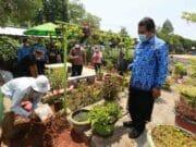 DKP Kota Tangerang Sebar Ratusan Ribu Bibit Tanaman Produktif