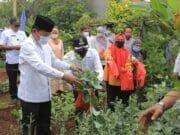 DKP Kota Tangerang Sebar Bibit Sayuran Buah Sebanyak 486 Ribu Polybag