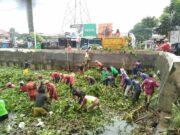 Antisipasi Banjir, DPU Tangsel Bersih-Bersih Enceng Gondok dan Lumpur