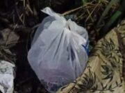 Jasad Bayi Ditemukan Dalam Kantong Plastik, Diduga Baru Saja Dilahirkan